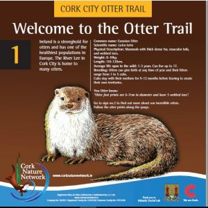 cork otters project sign 1