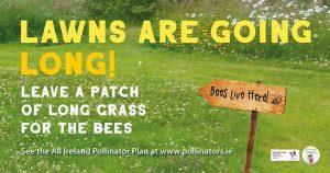 Lawn-Bees-Pollinator-Plan