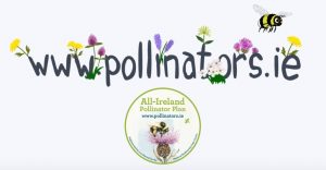 Pollinators-web-address