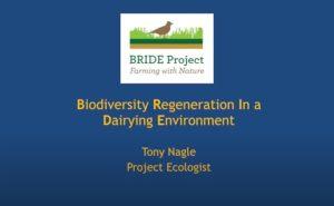 biodiversity regeneration
