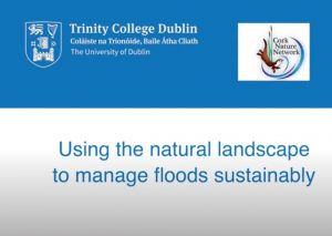 natural landscape flood management