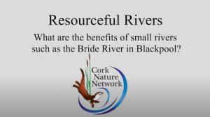 resourceful river movie